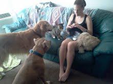 Lexis,Heidi,Duke,Rey & Cleo